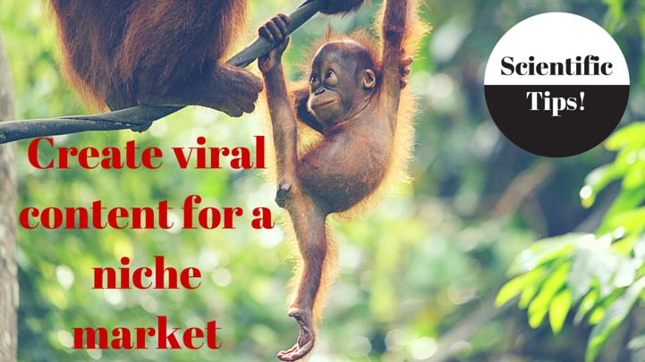 niche market viral content pic