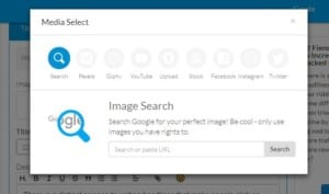 Pic showing image search tools for Riddle's quiz maker