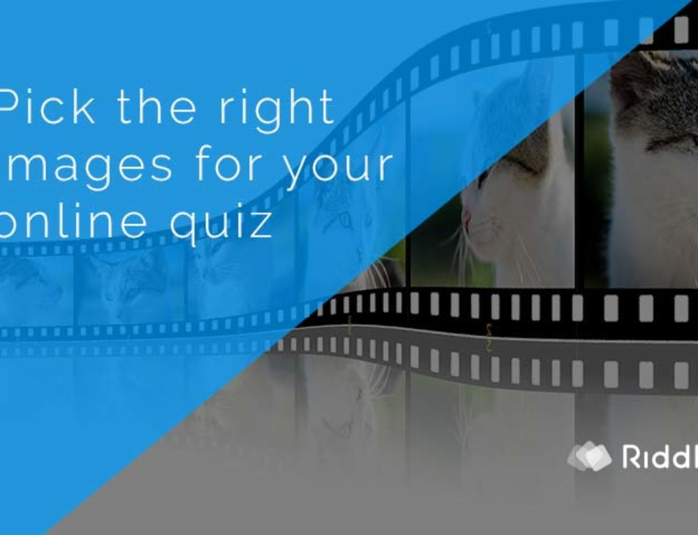 Online quiz images – choosing the right picture