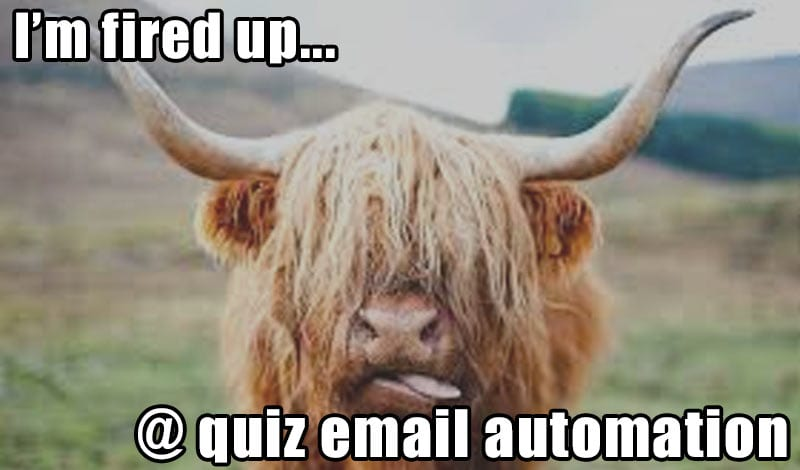 quiz email automation