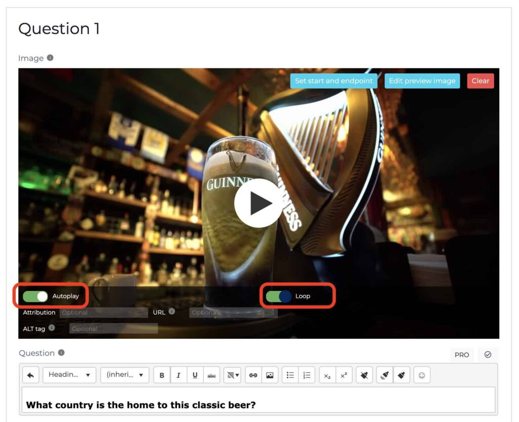 MP4 video autoplay and loop